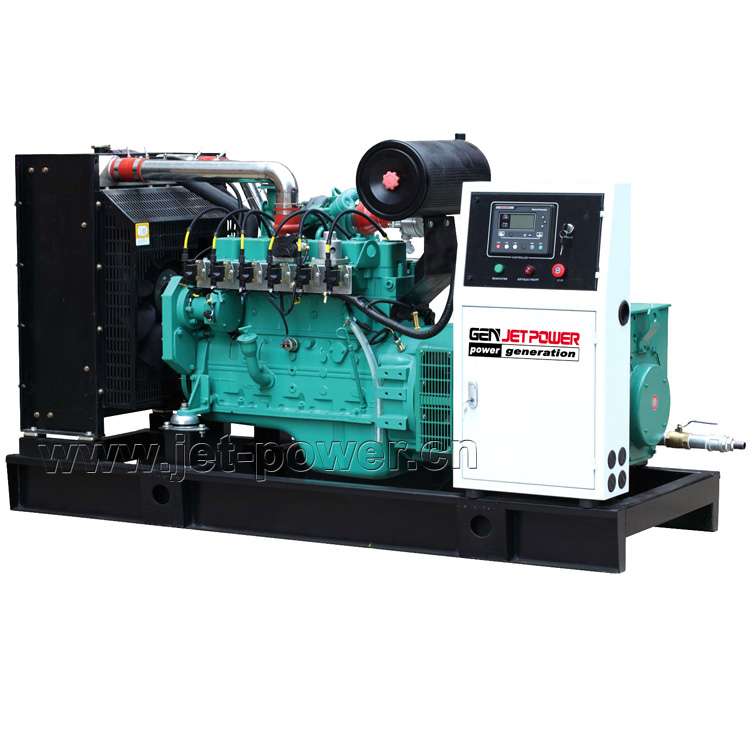 Natural Gas Biogas Generator Set